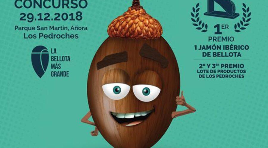 Concurso La Bellota Más Grande Gana 2018