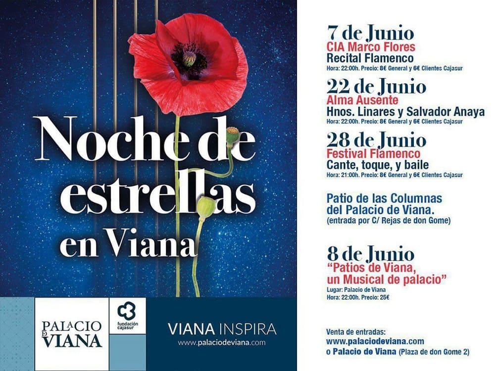 Programa Noche de Estrellas en Viana 2019